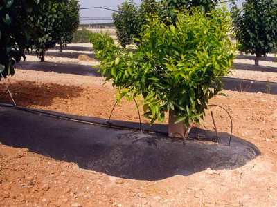 Beniplast Benitex - Agrotextiles - Suelos2