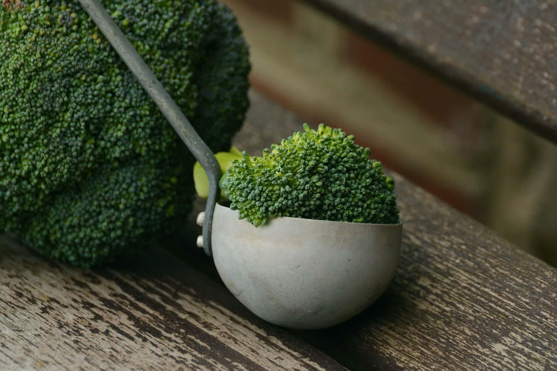 broccoli-1974801_1920