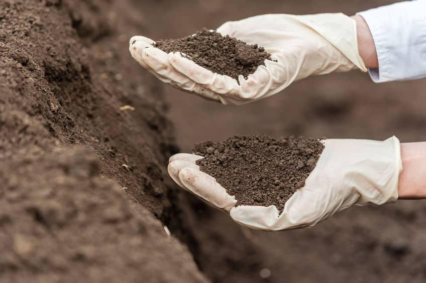 analizar suelos