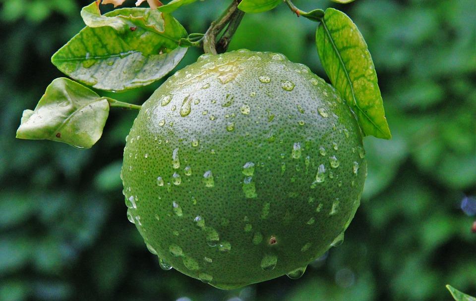 frío naranja lluvia