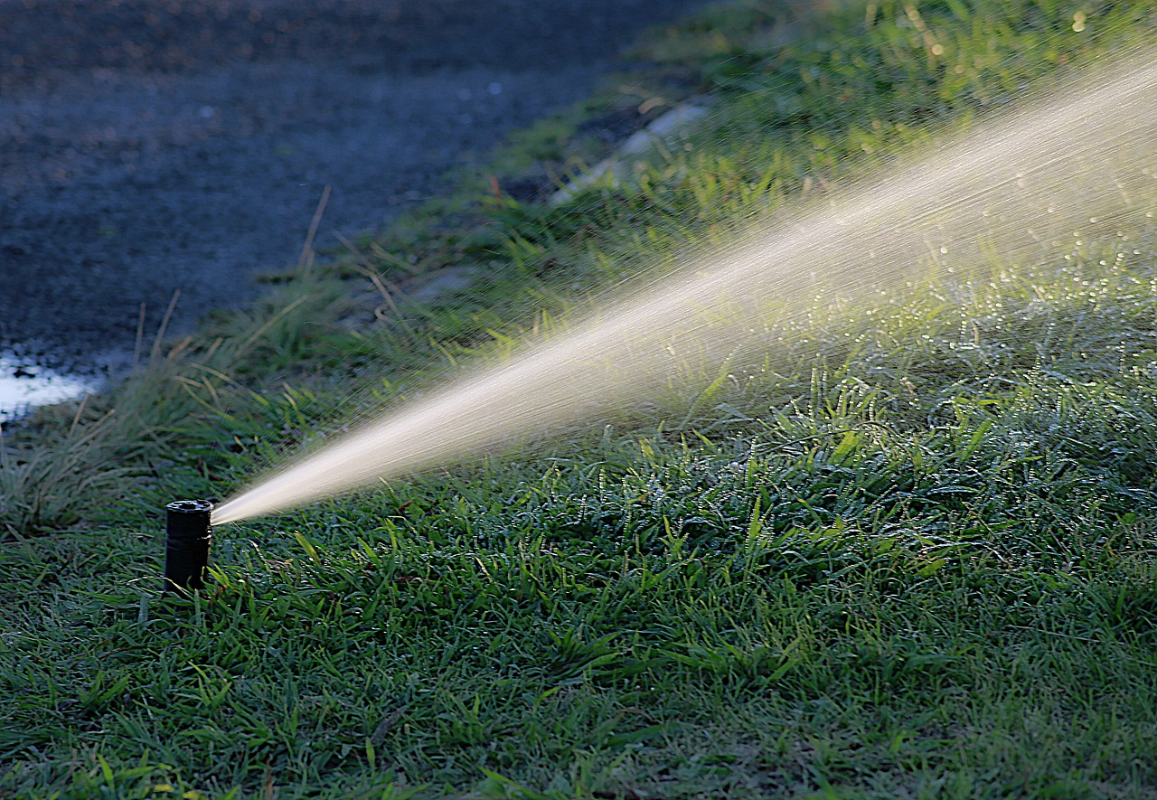 agua riego cultivos